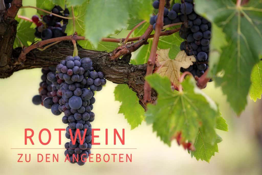 Finde mehr über unsere Rotweine heraus